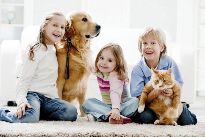 В здоровой семье здоровый питомец